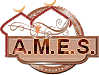 A.M.E.S